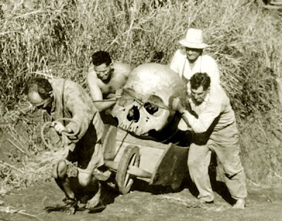 big_ancient_skull
