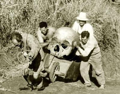 big_ancient_skull