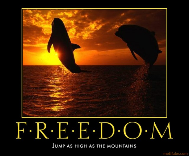 freedom-freedom-demotivational-poster-1268186964
