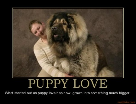 puppylove_grownup