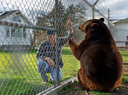 01-ohio-boo-boo-brown-bear-670