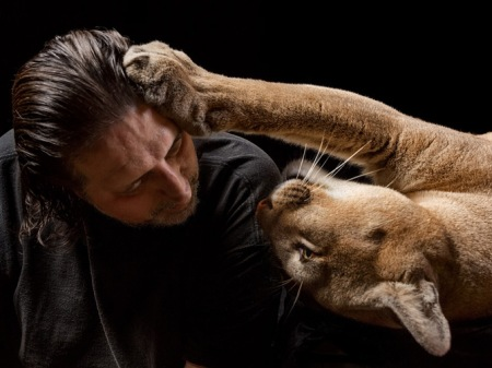 07-pet-cougar-670