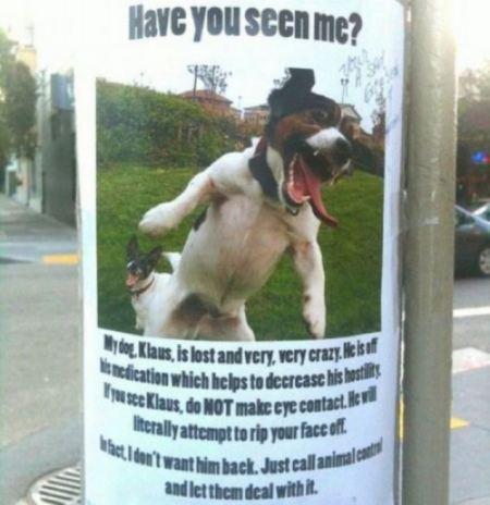 funny-lost-pet-signs-6.jpg