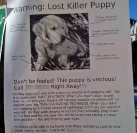 funny-lost-pet-signs