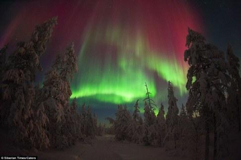 Siberian_aurora_borealis