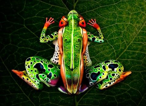 Human_frog