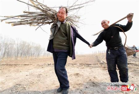 jiahaixiajiawenqi3.jpg