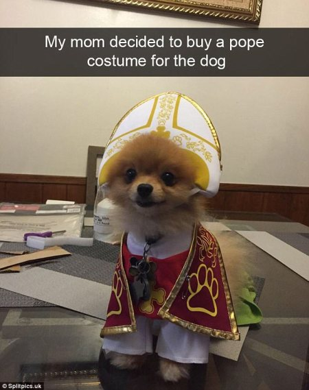 dog_religious_outfit.jpg